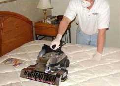 El Servicio de Limpieza de Colchón Como Idea De Negocio