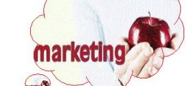 Fundamentos del marketing